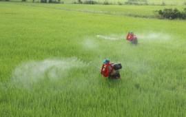 Những chiếc máy giúp nông dân nhàn nhã mà vẫn thu hoạch cao