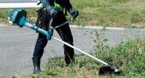 Giữa máy cắt cỏ chạy điện và máy cắt cỏ chạy xăng nên chọn loại nào?