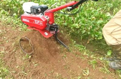 Giới thiệu máy xới đất tl 401 và máy xới đất tl601